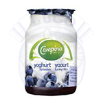 CAMPINA YOGHURT OP FRUIT 150 GR BRAAM
